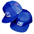 Letter Carrier Cap Baseball Style Winter Solid Item: D540